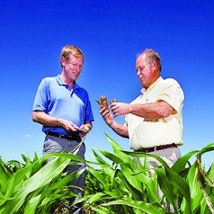 Corn Cobs Eyed for Bioenergy Production