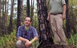 UF researchers find changes in forest management could produce large water yields.