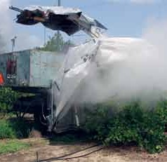 UF/IFAS researchers use steam to treat citrus greening