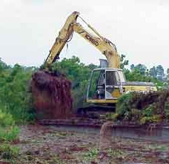 Public input sought on FWC permit request for lake restoration