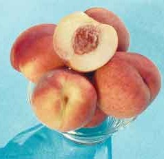 Introducing Gulfsnow, a New Peach Variety from ARS