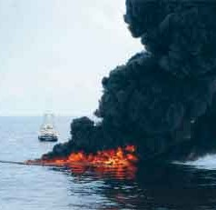 Report: Wider Impact from BP Spill