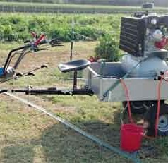 Weed blasting offers new control method for organic farmers