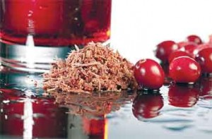 A new cranberry compound has the potential to control urinary tract infections. ARS scientists and collaborators purified the compound from cranberry pulp (center).