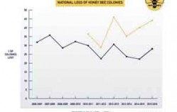 American beekeepers lost 44 percent of bees in 2015-16
