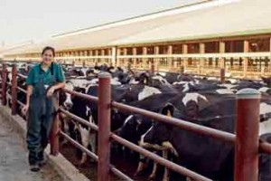Cristina Venegas-Vargas, a former graduate student and lead author of the study, poses in front of dairy cattle. Credit: Photo by Rebekah Mosci, a co-author of the study
