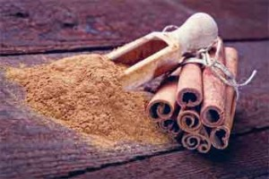 Cinnamon sticks and cinnamon powder. Credit: © pershing / Fotolia