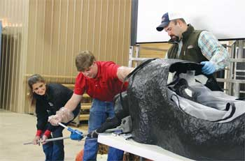 Participants practice extracting a calf using a calving simulator from Clemson University during a UGA short course. The simulator is similar to the one that will be used for trainings by UGA Cooperative Extension. Image credit: Jacob Segers/UGA.