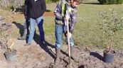 UF/IFAS Extension Baker County breaks ground on new teaching orchard