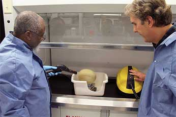 ARS food technologist Dike Ukuku (left) and chemical engineer David Geveke steam clean a cantaloupe as a means to reduce pathogen levels on the fruit.
