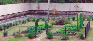 Tallahassee School of Math and Science in Leon County: Best New Garden, Secondary Division