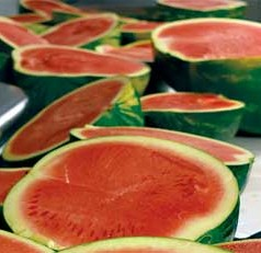 Do you love watermelons in the hot summer? UF scientists