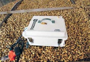 ARS scientists developed a new moisture-monitoring system for use in peanut-drying trailers. Photo by Samir Trabelsi.
