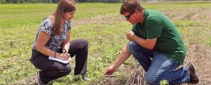 Controlling Weeds in a Way that Saves the Soil and Costs Less