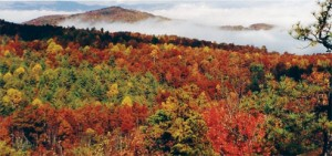 Fall colors in the Appalachian Mountains