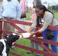 New UGA faculty get hands-on lessons in agriculture on annual New Faculty Tour