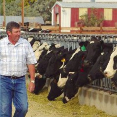 Results Released on Market Cow and Bull Audit
