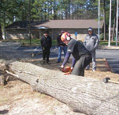 UGA training helps keep landscape, tree care workers safe