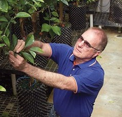 See science in action as UF/IFAS celebrates 100 years of Citrus REC