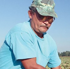 Pilot research projects selected for funding to improve agricultural worker safety, health