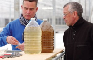 William van der Riet, TomAlgae's CEO, on the left, and Dr Victor Chepurnov, chief scientist and manager of application and development at the company's diatom production unit in Belgium © TomAlgae