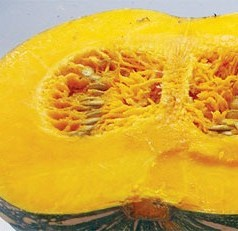 UF/IFAS researcher hopes to breed, grow nutritious pumpkins in Florida
