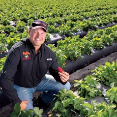 Dustin Grooms runs the family strawberry farm with love and duty